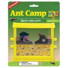 ANT CAMP_159171