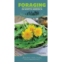 FORAGING IN NORTH AMERICA